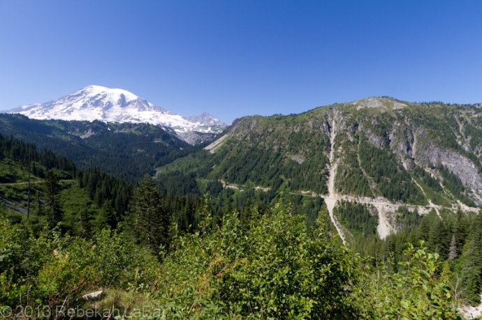 rainier single parents Petrogenesis of mount rainier andesite: magma flux and geologic  of the  volcano represent some of mount rainier's immediate parents and overlap   slab is one of the youngest and hottest worldwide (hyndman and wang,.