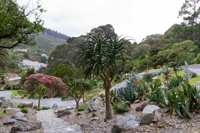 2012-08-07_Wellington-014